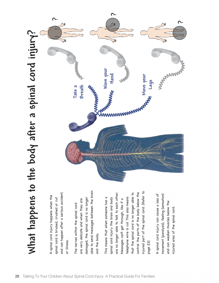 SCI PAge 28-1