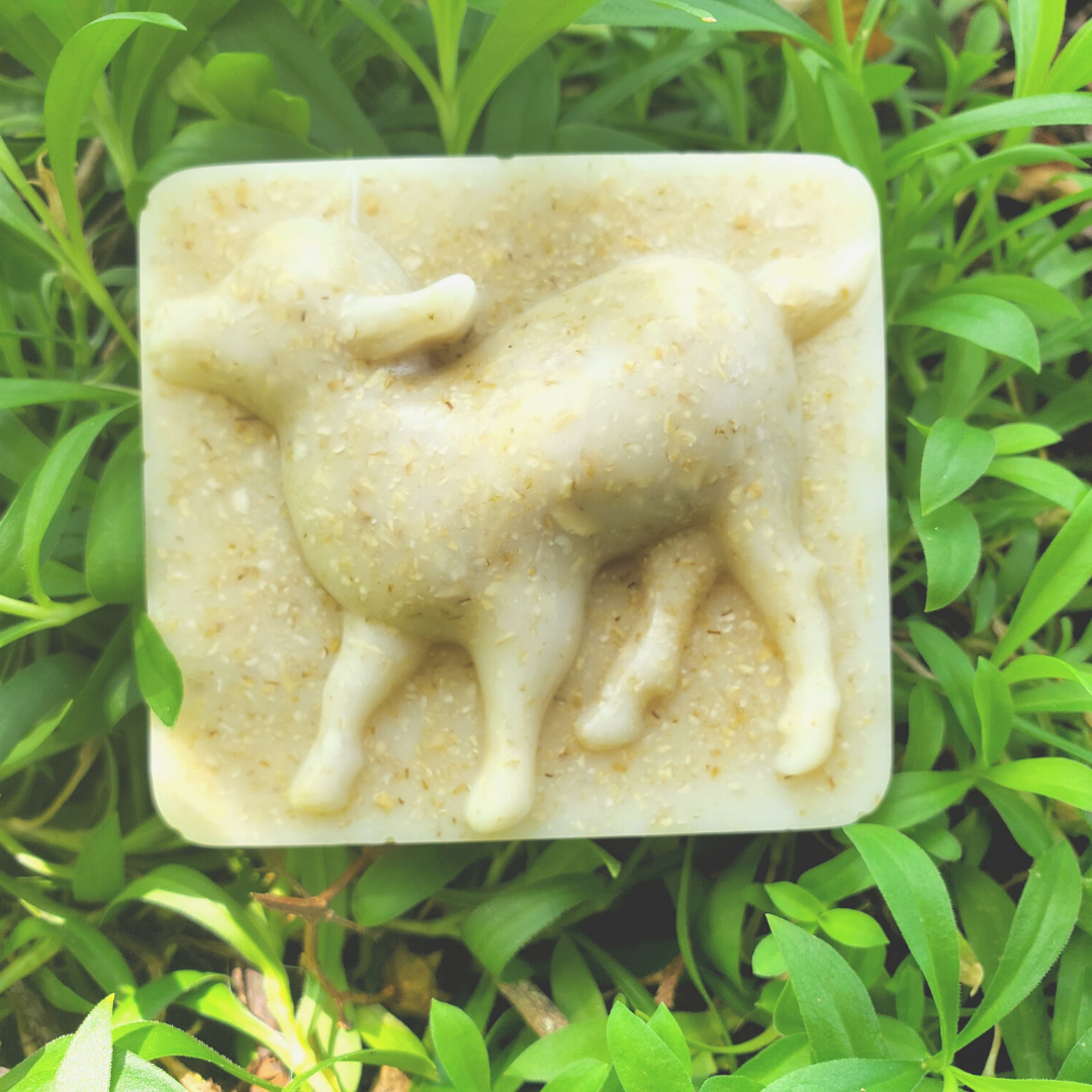 Goat milk soap - square bar with a baby goat design.